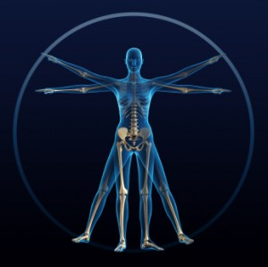 How Lupus Affects The Body 300x299 How Lupus Affects the Body